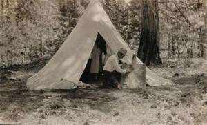 Willard Campsite