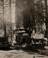 Willard Campsite 2