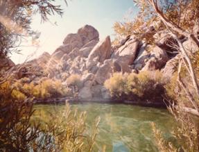Lone Pine Pond
