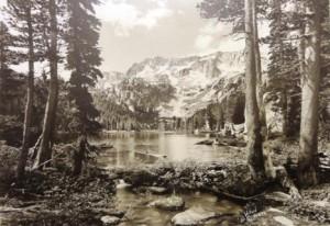 Willard's Tee Jay Lake